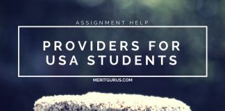 assignment help providers for USA students