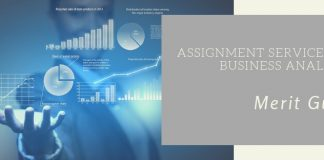 Assignment services for Business Analytics