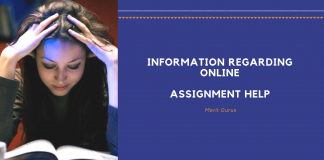 Grab The Information Regarding Online Assignment Help